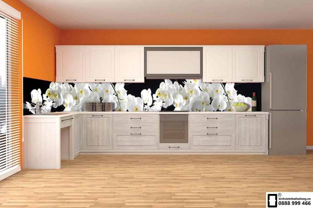 Kính ốp bếp 3D mẫu 56