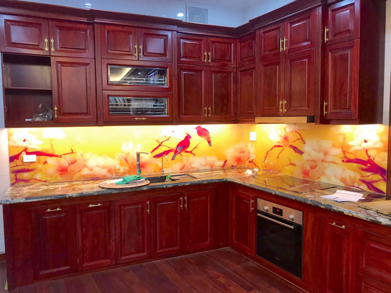Kính chịu nhiệt ốp bếp in 3D vẹt đỏ